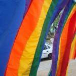UNIÃO HOMOAFETIVA ESTÁVEL: UM BRASIL MAIS LIVRE